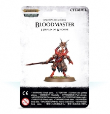Bloodmaster – Herald of Khorne
