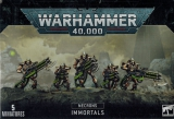 Necron Immortal / Deathmarks